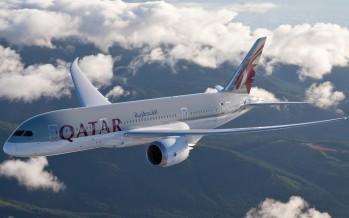 Mit Qatar Airways zum Walhai-Tauchen nach Dschibuti
