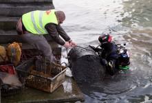 SUAT – Abfalltaucher säubern Gewässer der Schweiz