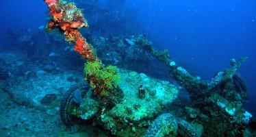 Tauchen rund um Yap und Truk – Wracks und mehr in Mikronesien