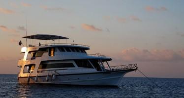 """Malediven – 30 Prozent Rabatt für Tauchsafaris mit der """"Sheena"""" im Mai"""