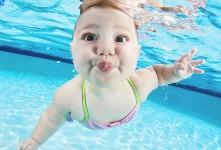 Fotostrecke mit Baby-Bildern – So schwimmt der Taucher-Nachwuchs
