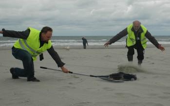 Project Blue Sea – Sascha Regmann kämpft für Wildtiere an den Küsten