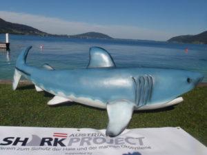 """""""Sparky"""" auf dem Trockenen. Bald wird er im Freibacher Stausee eine Attraktion für Taucher sein. (Fotos: Sharkproject Austria)"""