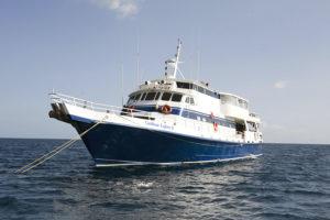 Auf hoher See: die Caribbean Explorer. (Foto: Veranstalter)