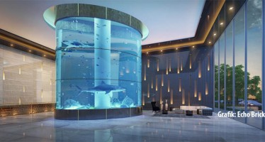 Luxus-Bauprojekt mit Haifischbecken sorgt für Wut bei Tierfreunden