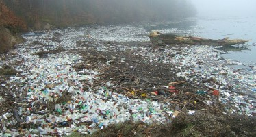 Wissenschaftler untersuchen giftiges Mikroplastik am Meeresboden