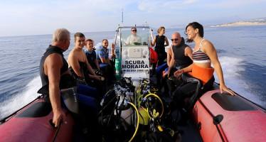 """Taucher erleben an der Costa Blanca """"das Meer der kleinen Dinge"""""""