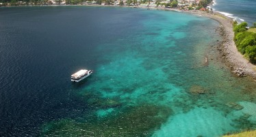 Auf der Karibik-Insel Dominica startet erneut das Dive-Fest für Taucher