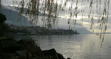 Für den Delfinschutz – Mit Stehpaddel den Genfer See komplett umrundet