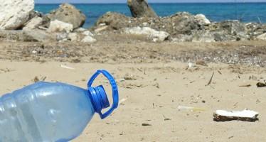 OceanCare will Meerestiere vor tödlichem Plastikmüll schützen
