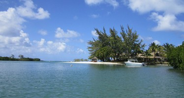 Ocean Immersion – Virtuelle Realität soll die Umwelt schützen