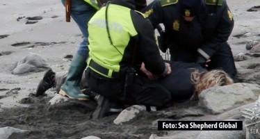 Sea Shepherd wegen Faröer-Aktion von Gericht für schuldig erklärt
