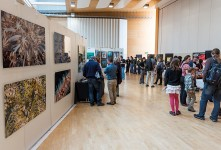 Fotogalerie – Das unterwasserfestival.ch in Gossau geht in die 6. Runde