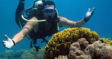 """Tauchevent """"Aqaba Dive Challenge"""" lockt Tauchsportler aus Deutschland in den Süden Jordaniens"""