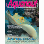 aquanaut 7 8 15 cover
