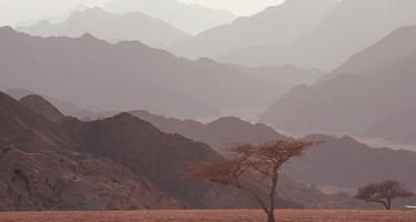 Lufthansa-Gruppe stoppt Flüge auf den Sinai