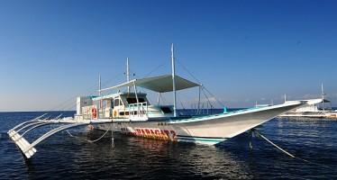 Walhaisafari Philippinen