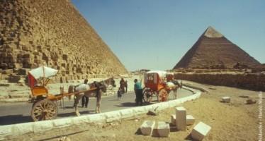 Ägypten – NEWS