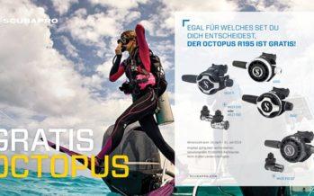 Schlau sparen bei der Gratis-Octopus-Promo