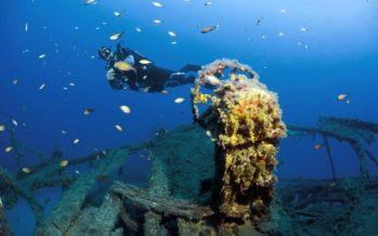 """Unterwasser-Fotowettbewerb """"Blue Dolphin of Malta"""""""