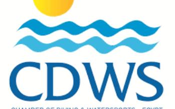 Anordnung der CDWS