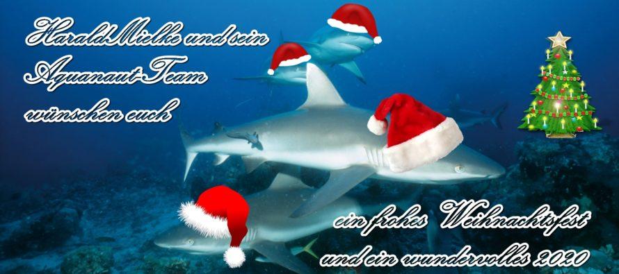 Frohe Weihnachten und ein glückliches neues Jahr • Feliz Natal e um próspero Ano Novo • Merry Christmas and a Happy New Year!