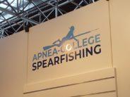Harpunier-Fischerei auch in Deutschland wieder salonfähig?