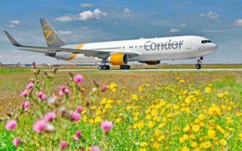 Condor fliegt zum Beginn der Sommerferienzeit ab 25. Juni wieder zu den schönsten Urlaubszielen